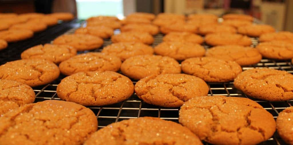 soft molasses cookies on a cookie sheet