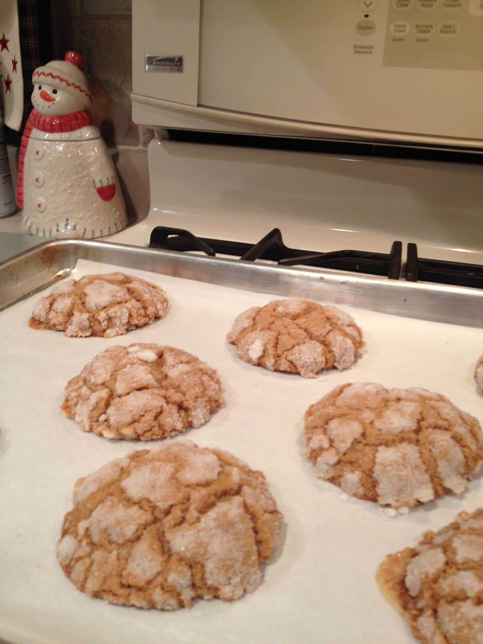 ginger doozie cookies