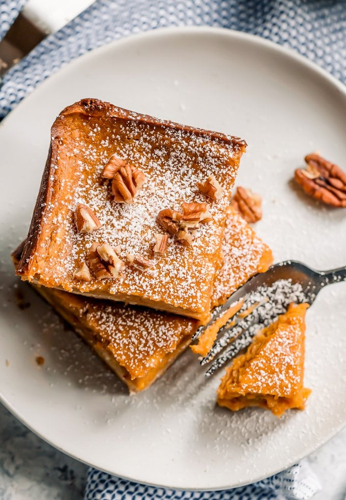 Pumpkin gooey butter cake with powdered sugar and pecans