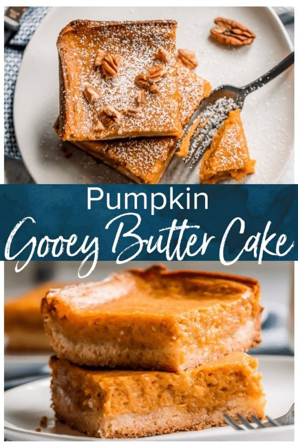 Pumpkin Gooey Butter Cake is a fall dessert recipe, but I like to make (and eat!) this ooey gooey cake year-round! If you don't know what gooey butter cake is, then you NEED to make this recipe ASAP. The combination of pumpkin and the gooey butter cake will blow your mind!