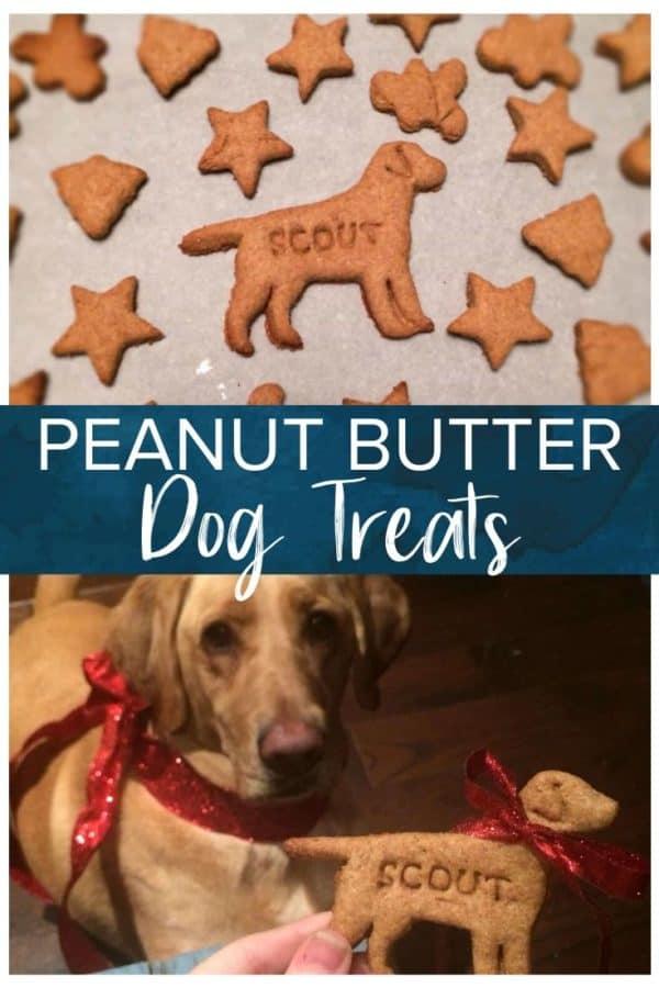 peanut butter dog treats pinterest image
