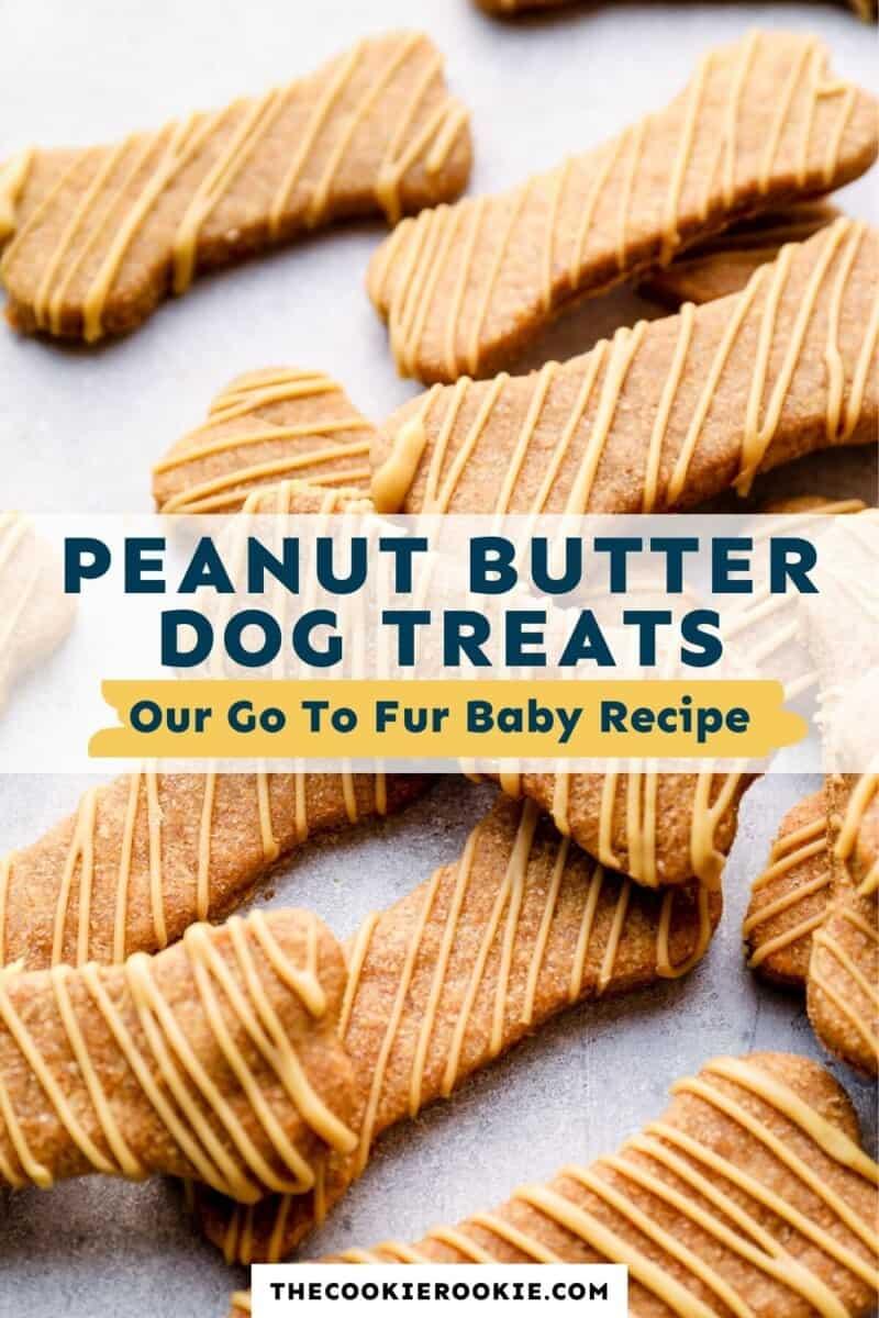 dog treats pinterest