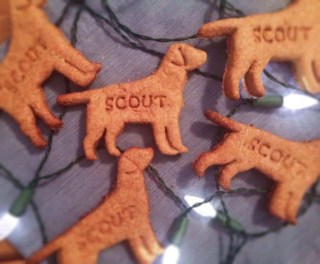 homemade dog biscuits laid next to christmas lights