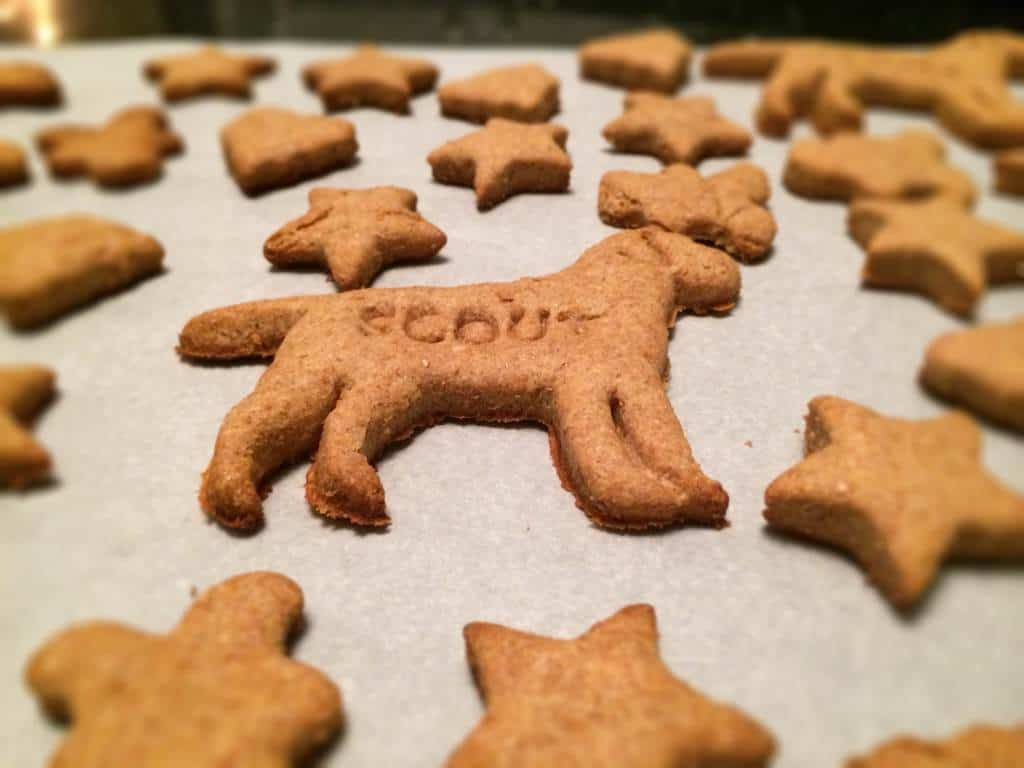 simple homemade dog treats! making these for my pup for Christmas!