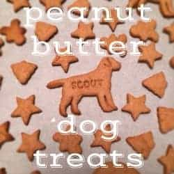 Homemade Dog Treats are the best way to show your pet that you love them like family! These Homemade Peanut Butter Dog Treats are a Dog Biscuit Recipe that your fur baby would request every week if they could. If you've wondered How To Make Dog Treats, it's much easier than you might have thought. Your dog deserves these homemade treats and will be so excited!