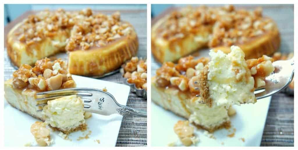 caramel macadamia cheesecake. shockingly easy DECADENT dessert. this is my new favorite.
