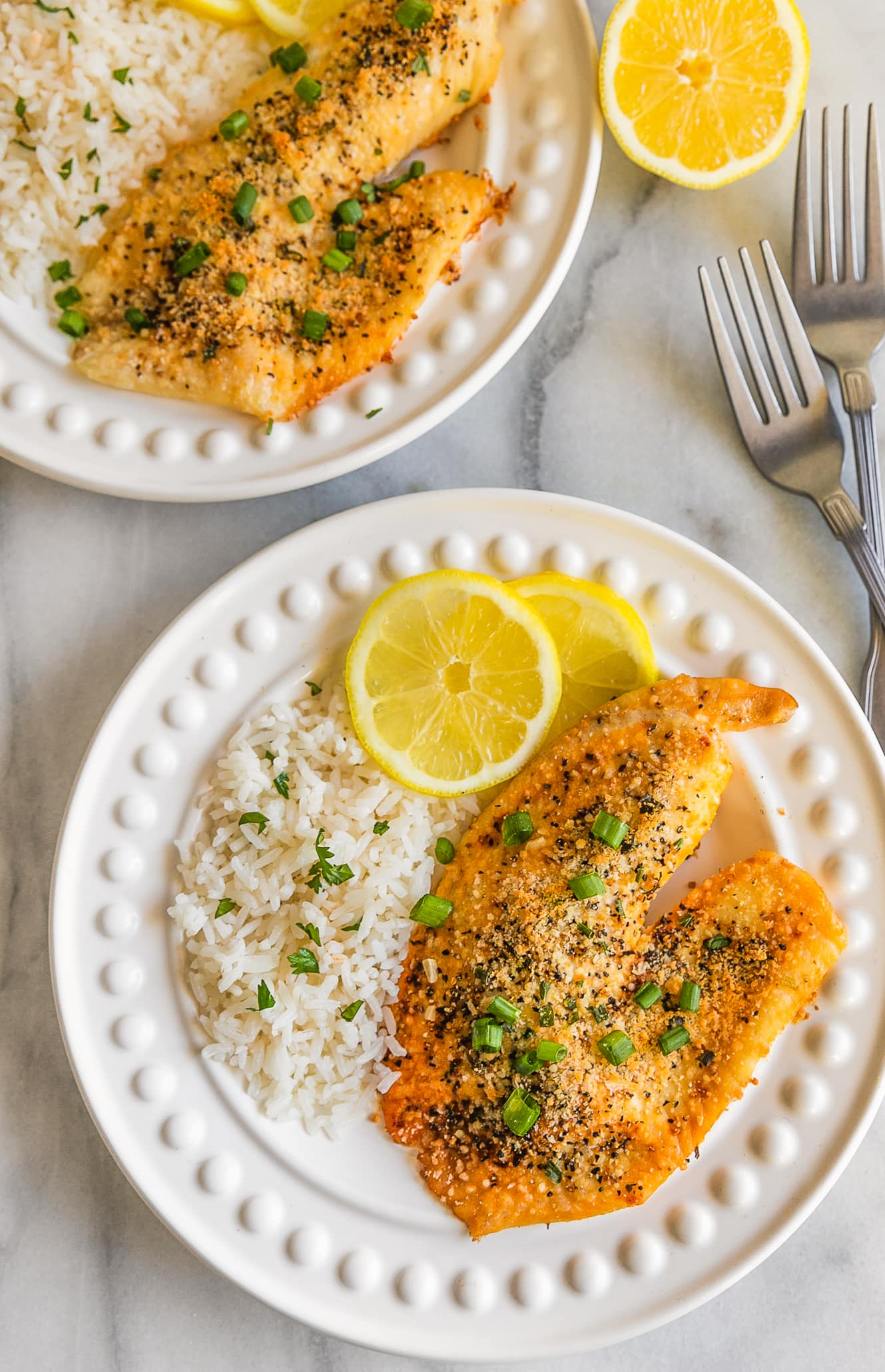 plated tilapia recipes with rice and lemon
