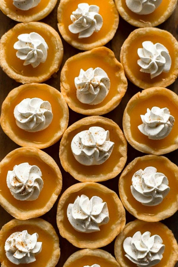 pumpkin pie jello shots topped with whipped cream