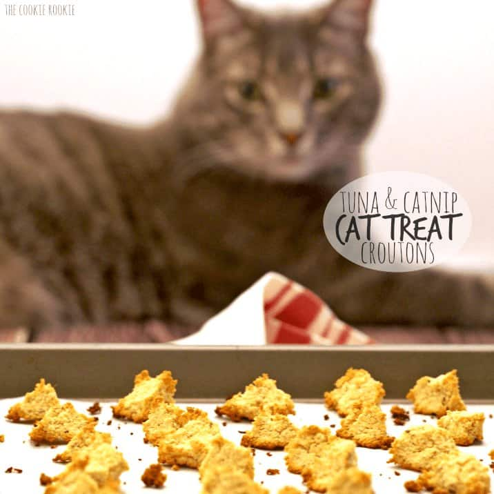 DIY Cat Treats on tray