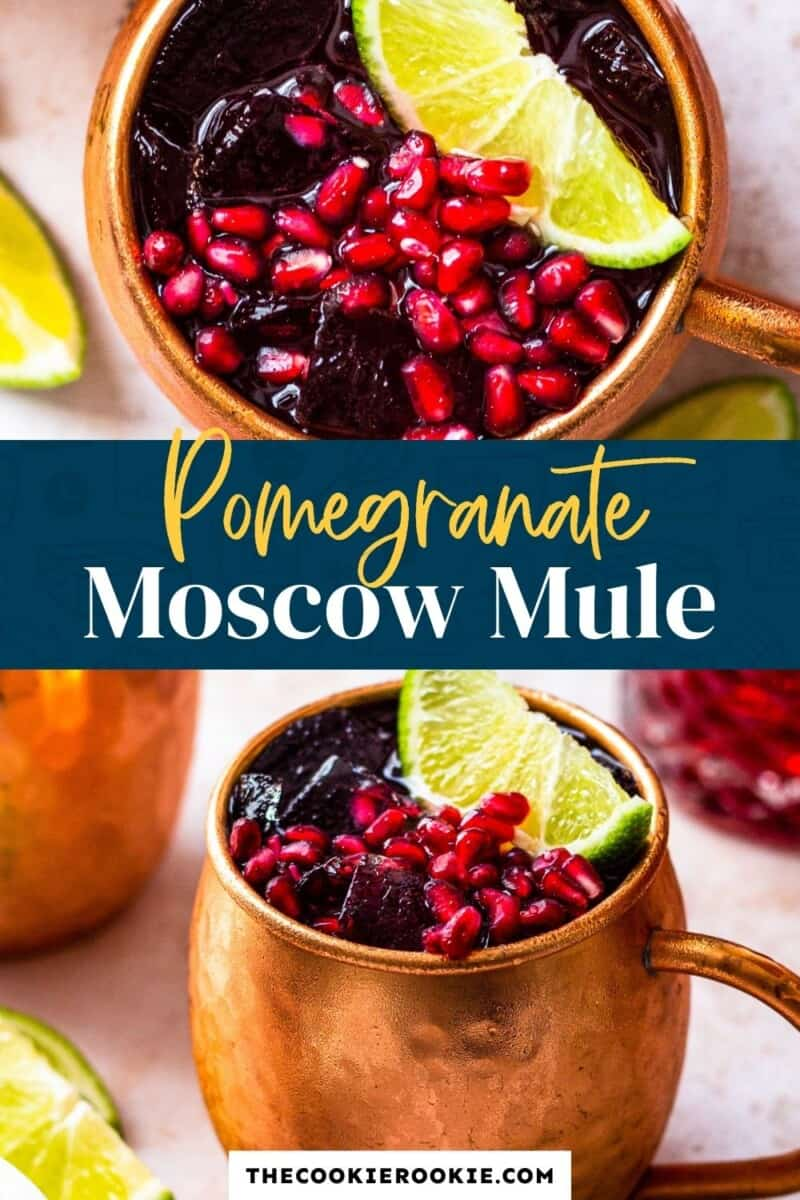 pomegranate moscow mule pinterest