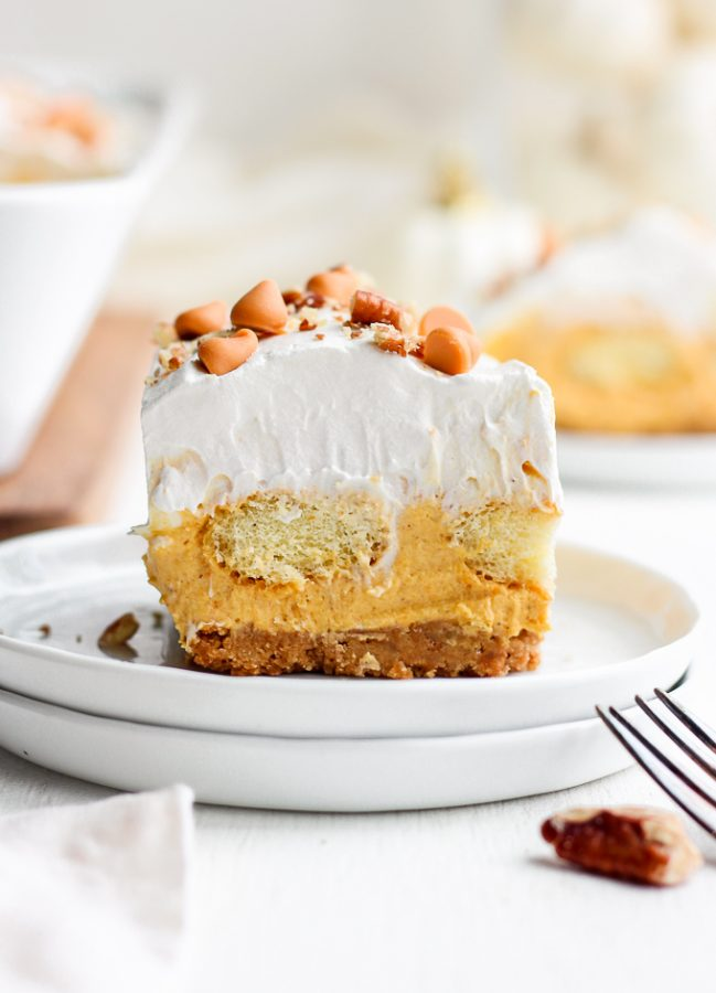 Pumpkin Pie Dessert Lasagna is a fun twist on a Thanksgiving classic! This sweet pumpkin lasagna recipe is made up of layers of pumpkin pie, whipped cream, and lady fingers. Utterly delicious! Add this easy Thanksgiving dessert recipe to your holiday table.