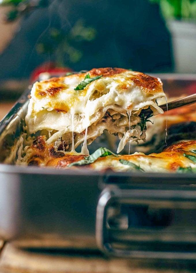 white chicken lasagna in baking pan