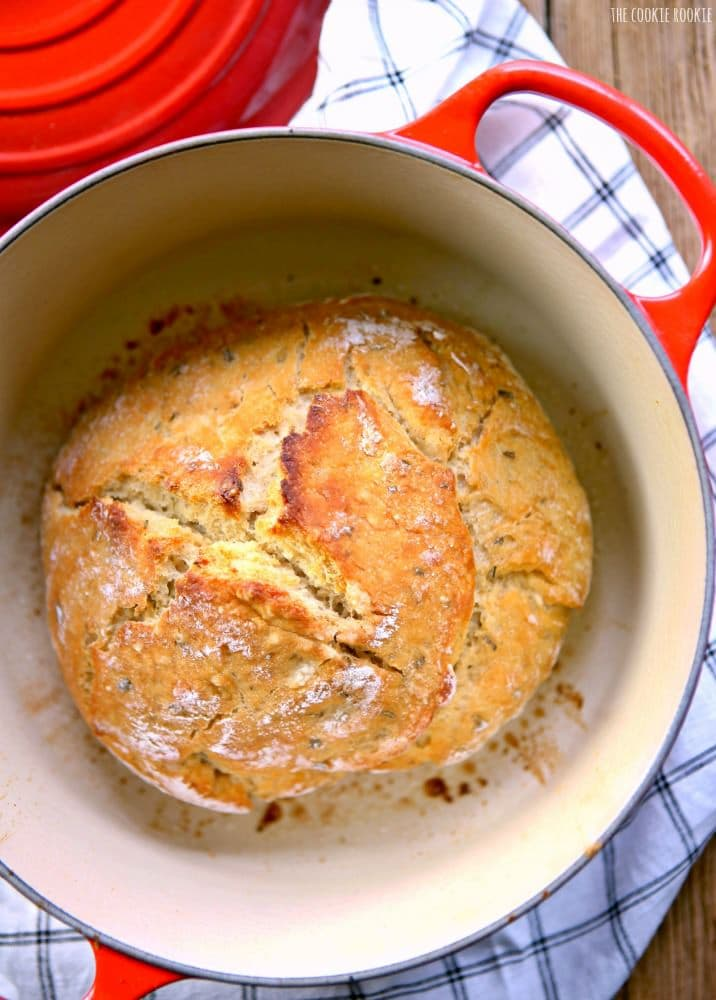 EASY Rosemary Sea Salt Dutch Oven Bread! Crusty Bread made in a Dutch Oven. The only homemade bread recipe you'll ever need! | The Cookie Rookie!