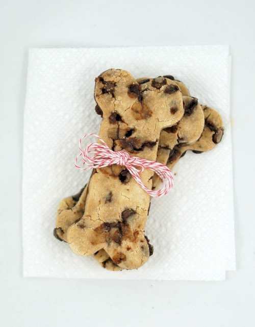 Carob Chip Dog Treats | Minnie in Manhattan