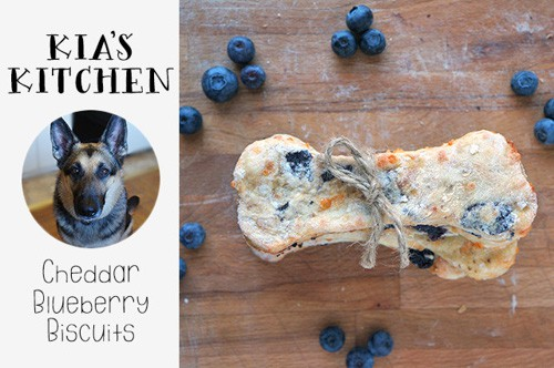 Cheddar Blueberry Biscuits | Life Laugh Cook