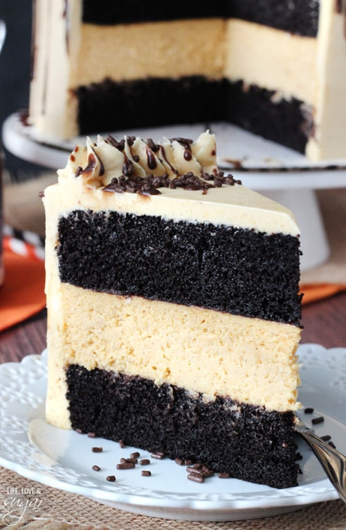 Chocolate Pumpkin Cheesecake Cake | Life Love and Sugar