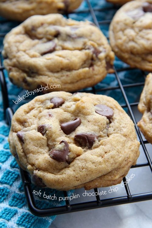 Perfect Soft Batch Pumpkin Chocolate Chip Cookies | Baked by Rachel
