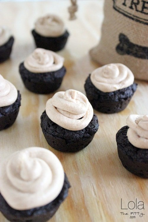 Carob Pupcakes with Peanut Butter Frosting | Lola the Pitty