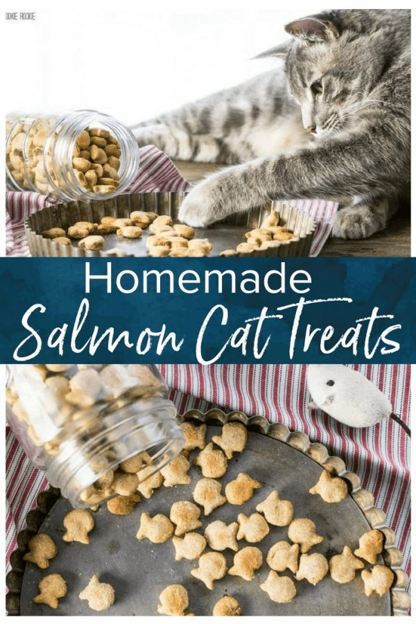 Homemade cat treats are a fun way to show your cats how much you love them! This fish-shaped 3 ingredient salmon cat treat recipe will be a hit with your cat babies. Featured in Family Circle.