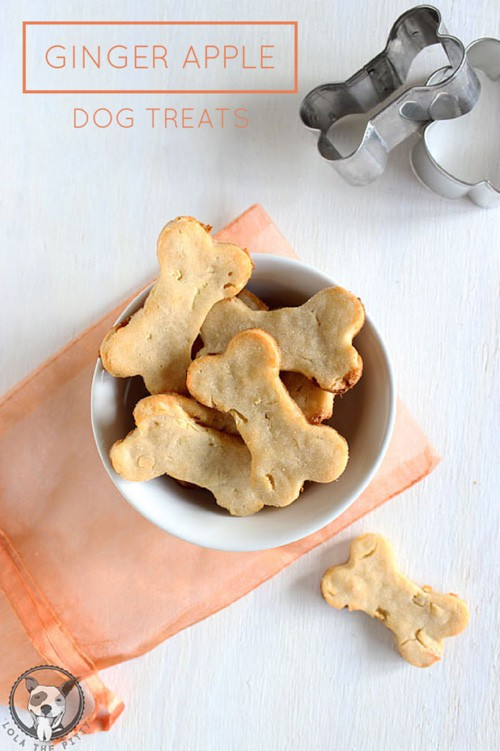 Ginger Apple Dog Treats | Lola the Pitty