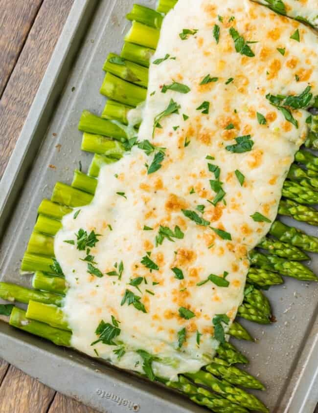 Three Cheese Asparagus Gratin; Asparagus under a creamy blanket of cheese. What could be better?? The perfect EASY Thanksgiving side dish!