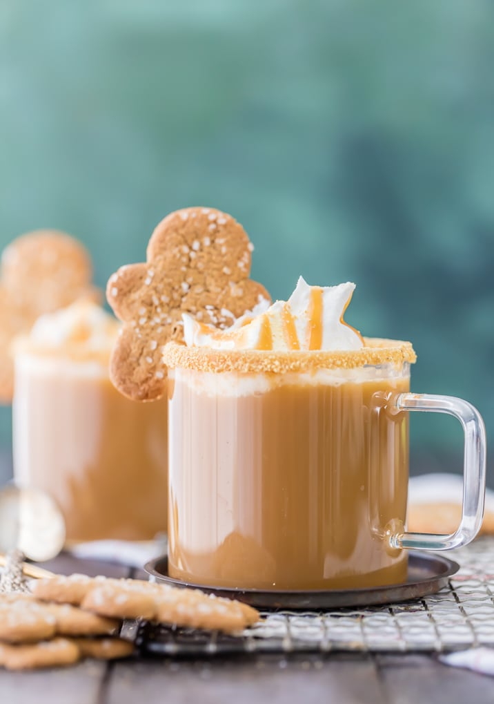 Slow Cooker Gingerbread Latte | Non-Alcoholic Holiday Drink Recipes For All To Enjoy