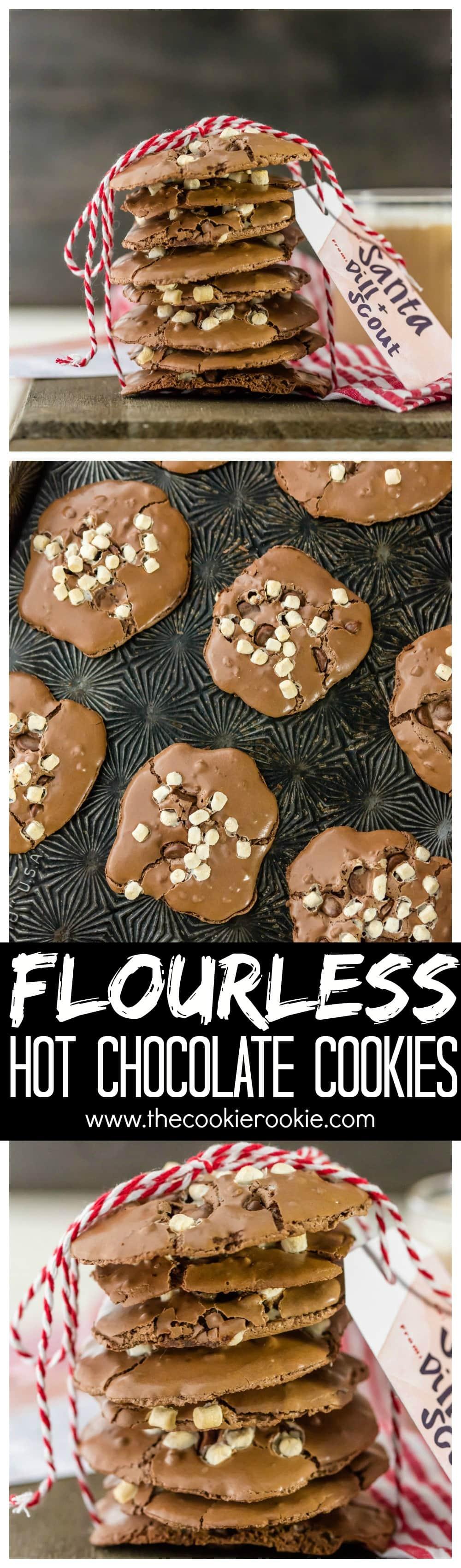 Flourless Hot Chocolate Cookies - The Cookie Rookie