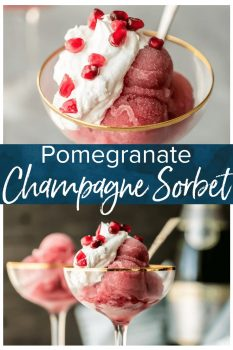 Pomegranate Champagne Sorbet is an easy sorbet recipe perfect for New Year's Eve, Christmas, and the holidays! Isn't it so pretty and festive? This pomegranate sorbet is a classy treat for the season!