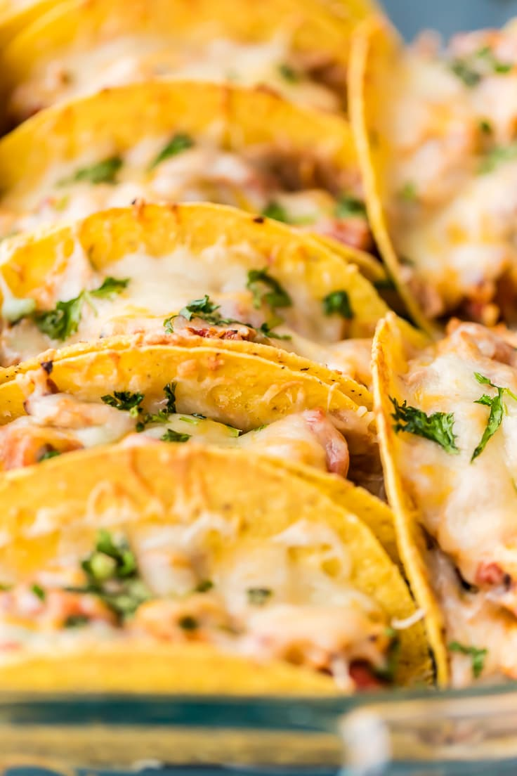 close up on tacos