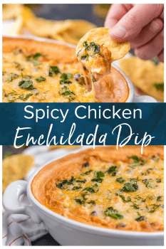 This Cheesy Chicken Enchiladas Dip is spicy and full of flavor. It's possibly the BEST DIP EVER! This spicy chicken dip is exactly what you need for any party! #thecookierookie #dip #cheese #enchiladas #texmex #partydip #cincodemayo #chickendip #spicy