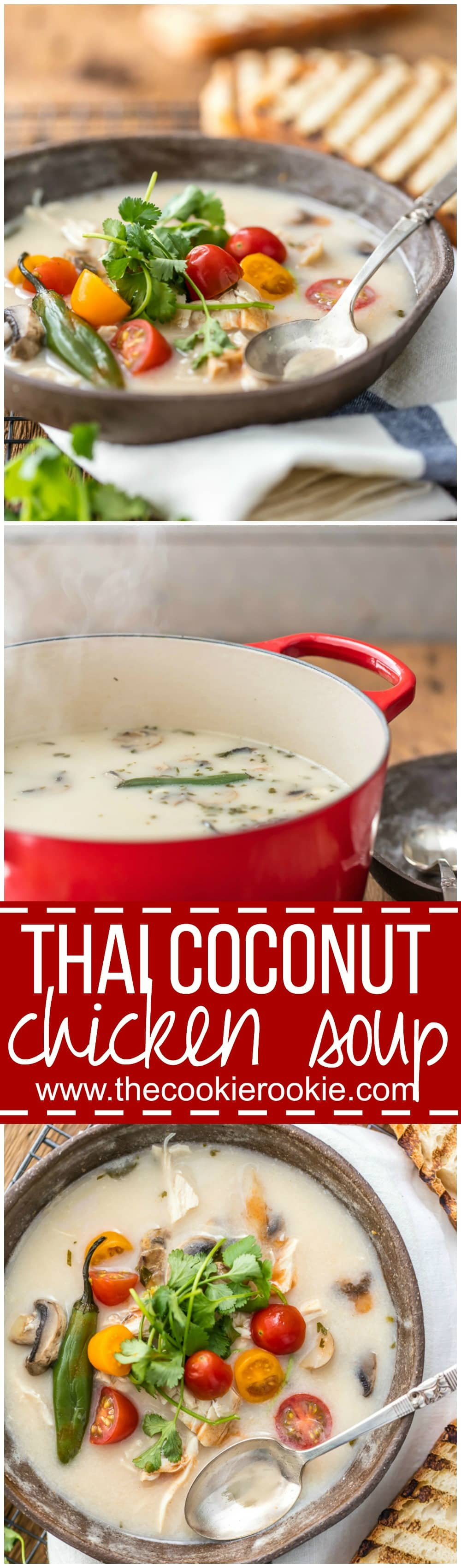 Thai Coconut Chicken Soup is healthy, EASY, and SO DELICIOUS! Loaded with cilantro, mushrooms, chicken, tomato, and chiles; so much flavor in such an easy Thai recipe! Perfect soup recipe!