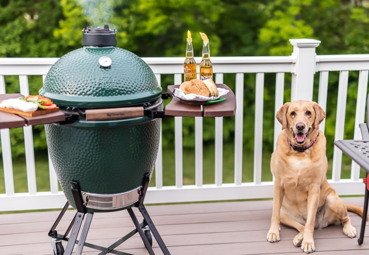 dog sitting next to a grill on a deck