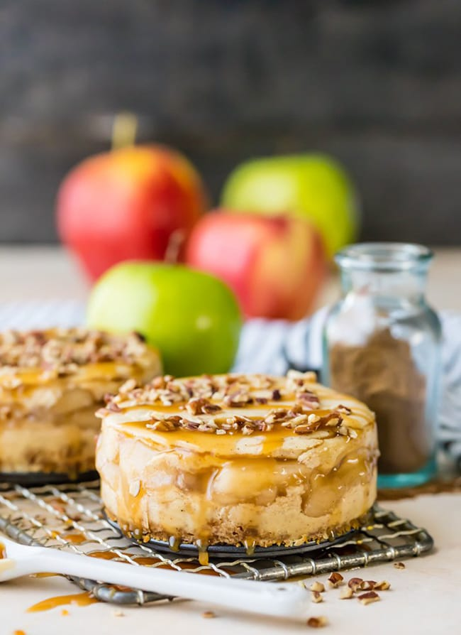Mini Apple Pie Cheesecakes | The Cookie Rookie