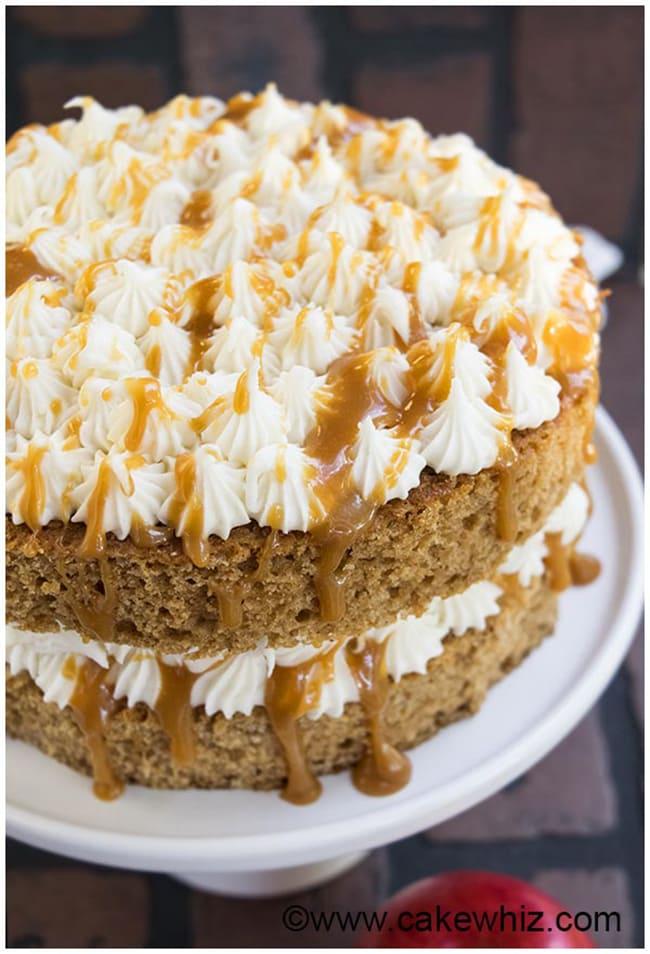 Spiced Applesauce Cake   Cake Whiz