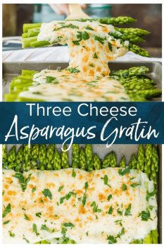 Three Cheese Asparagus Gratin is a delicious side dish perfect for holidays or any weeknight meal! Asparagus under a creamy blanket of a blend of cheeses. What could be better than cheesy asparagus?! This easy asparagus recipe just too good not to try!