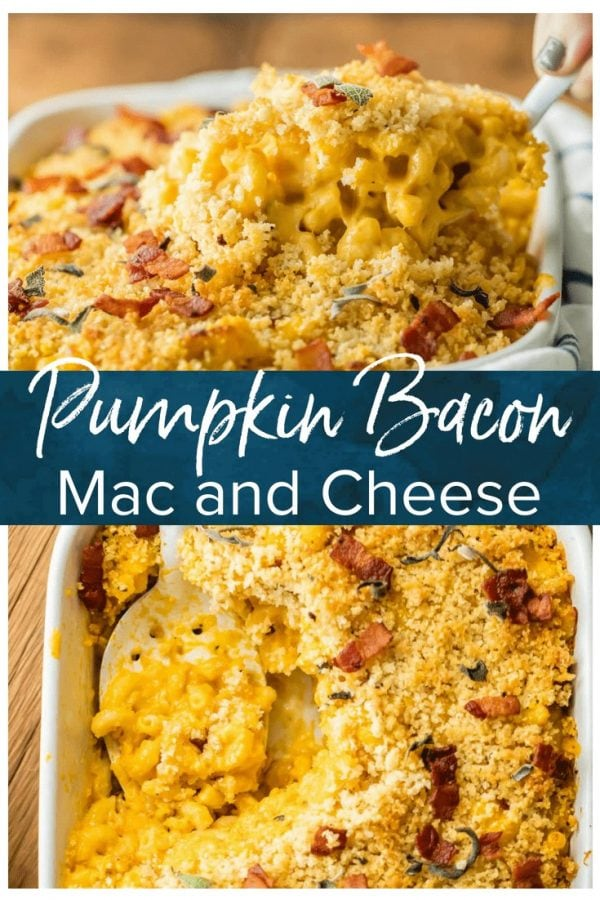 Pumpkin Mac and Cheese is the ULTIMATE comfort food for Fall. It's like autumn in a casserole dish! This baked mac and cheese with bacon is loaded with cheese, pumpkin, sage, bacon, and more cheese. It's one of the best macaroni and cheese recipes ever!