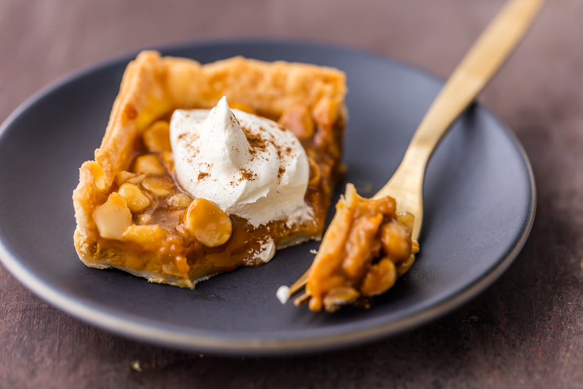 Pumpkin Pie Bars with caramel and macadamia nuts