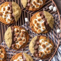 S'mores Cookies are one of the BEST Easy Cookie Recipes I have ever made (or tried!). These Easy Smores Cookies are a favorite at our house for Christmas or any time of year. It can be our little secret that they're made with pre-made refrigerated chocolate chip cookie dough, dipped in milk chocolate, then graham cracker crumbs. Everything you love about S'mores in cookie form. DIVINE! Easy S'more Cookies for the win!