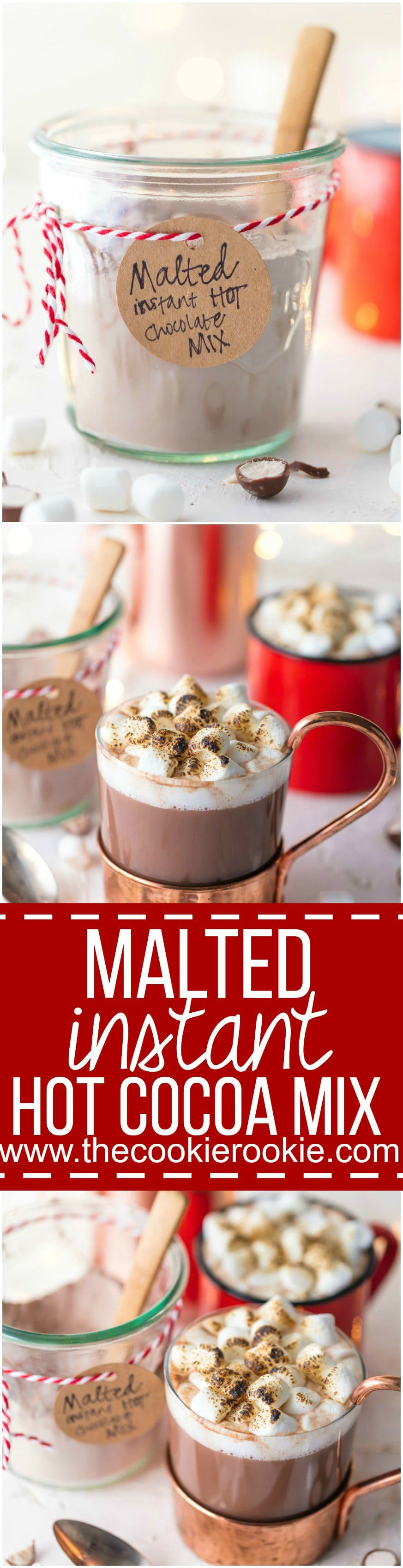 Malted Instant Hot Chocolate Mix - The Cookie Rookie
