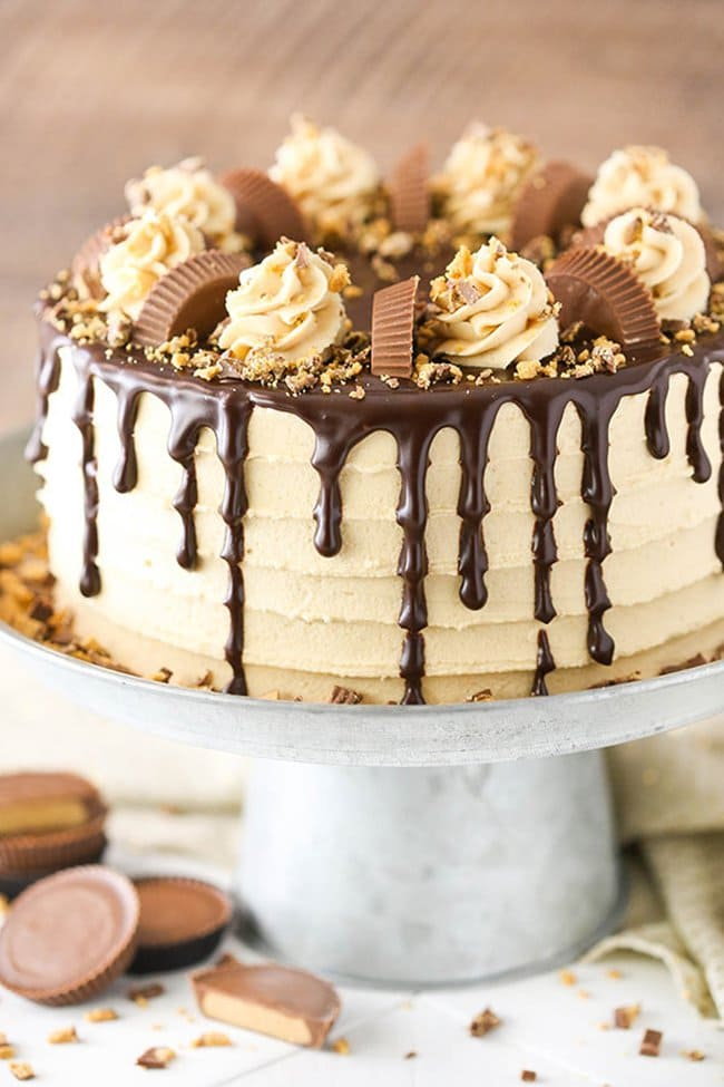 Peanut Butter Chocolate Layer Cake | Life, Love, and Sugar