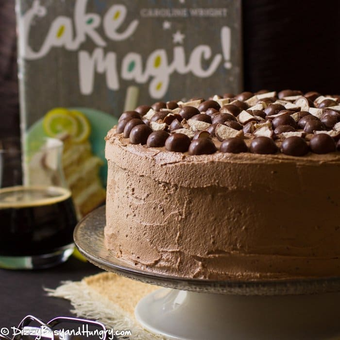 Malted Chocolate Stout Cake | Dizzy Busyand Hungry