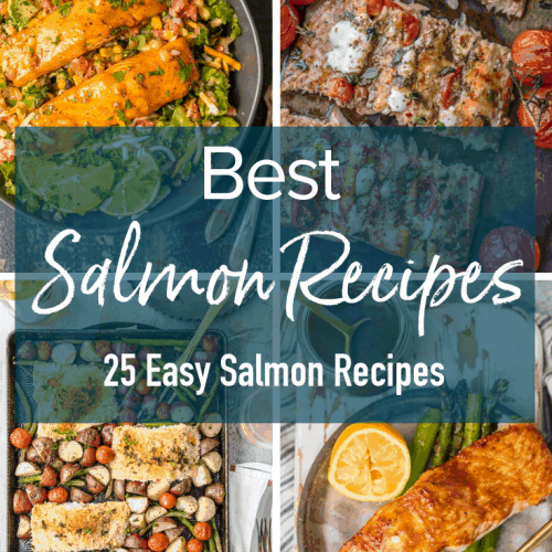 Easy Salmon Recipes are a great way to add this healthy food into your regular diet. Making a healthy dinner has never been easier with these 25 salmon dishes. Whether you prefer easy grilled salmon recipes, easy baked salmon recipes, or easy salmon salad recipes, there's something here you're sure to love!