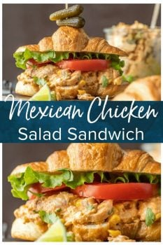 Make lunch spectacular with MEXICAN CHICKEN SALAD SANDWICHES! This easy twist on a classic is sure to please everyone at the table. Chicken salad loaded with taco seasoning, corn, peppers, and enchilada sauce