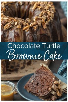 TURTLE CAKE is a chocolate lovers dream. This Turtle Brownie Cake recipe is a dense and moist chocolate brownie cake with walnuts and topped with the most incredible ganache and caramel drizzle. It simply doesn't get better than this Chocolate Turtle Cake! Crave worthy baking!