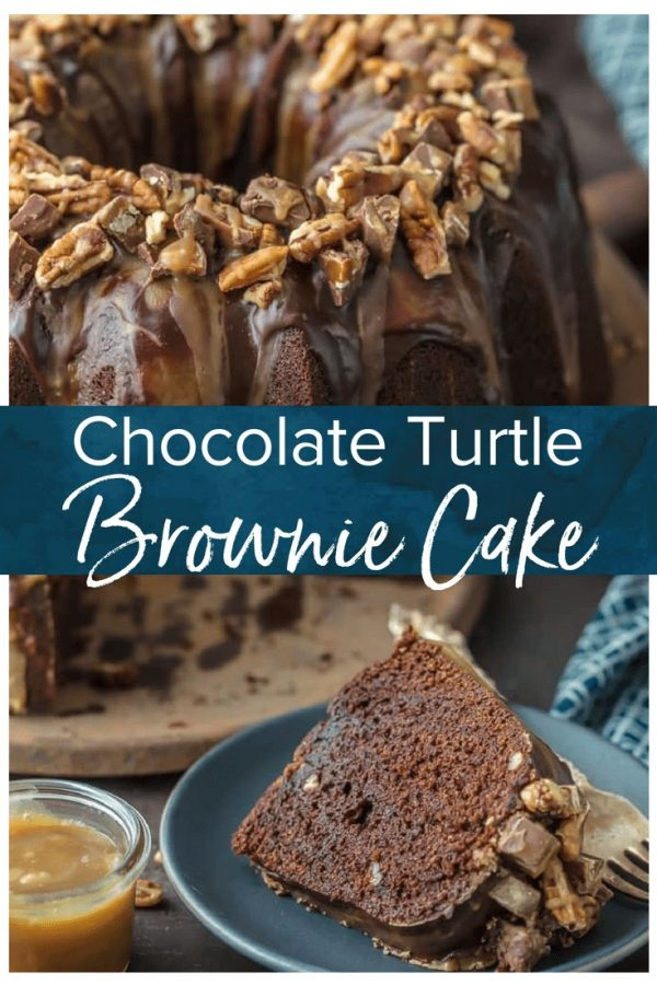 TURTLE CAKE is a chocolate lovers dream. ThisTurtle Brownie Cake recipe is a dense and moist chocolate brownie cake with walnuts and topped with the most incredible ganache and caramel drizzle. It simply doesn't get better than this Chocolate Turtle Cake! Crave worthy baking!
