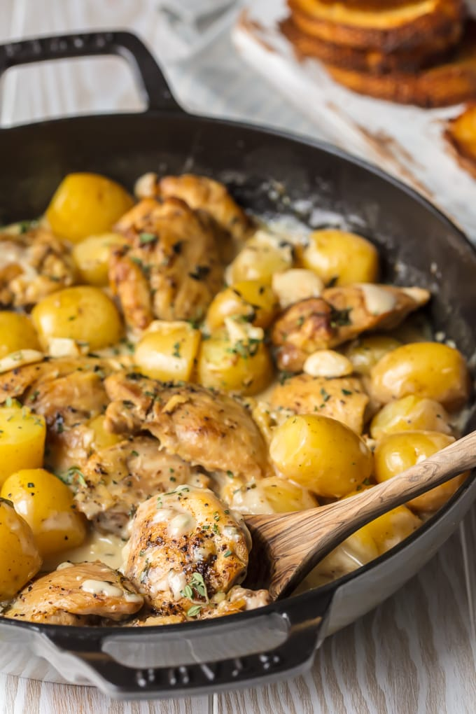 40 Clove Garlic Chicken and Potatoes with Cream Sauce in skillet