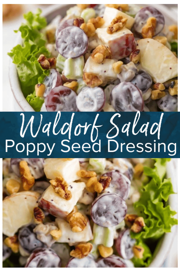 waldorf salad pinterest photo