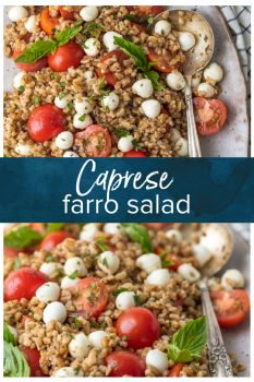 caprese farro salad pinterest collage