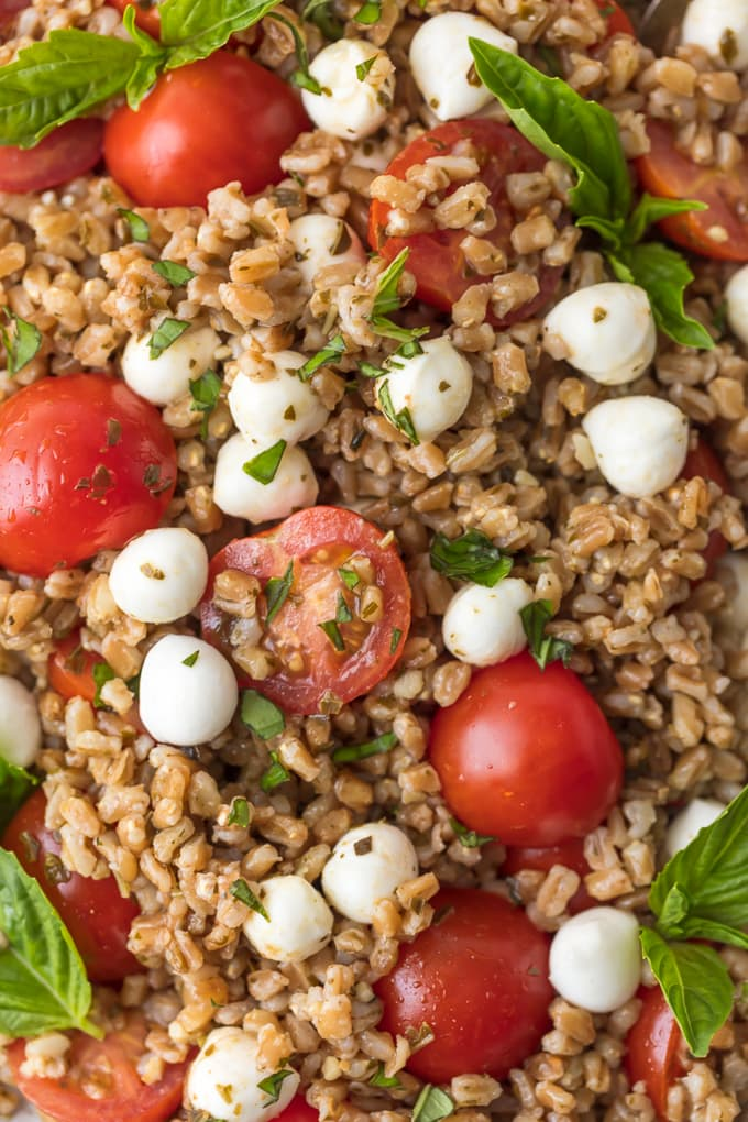 Caprese Farro Salad is a healthy side dish sure to please every member of the family. Caprese Salad with Farro is our favorite way to enjoy the best flavors; tomatoes, mozzarella, basil, and balsamic. Farro is such an easy and good for you grain to prepare and goes with just about any main dish. This Fresh Caprese Farro Salad Recipe is the perfect Summer Salad or meal!