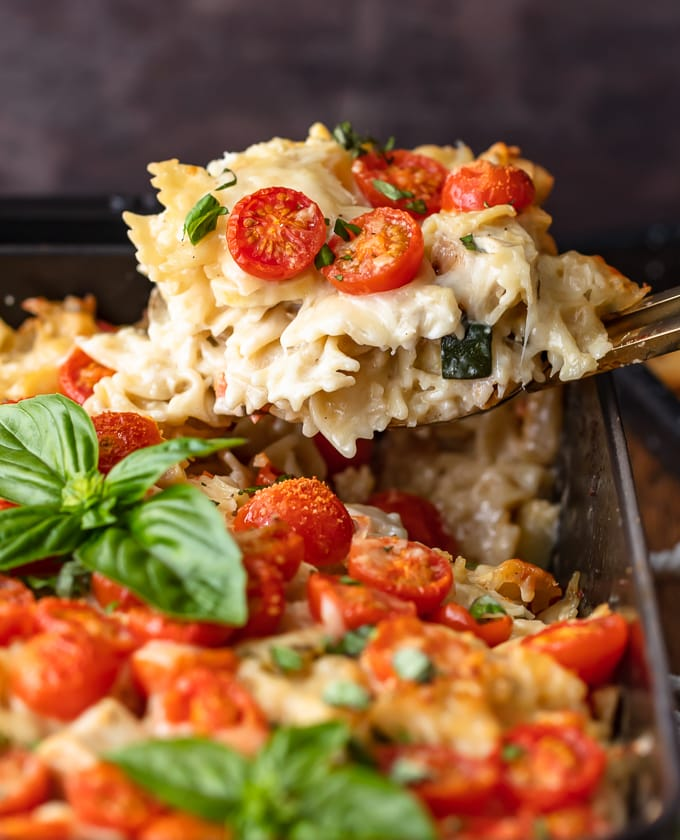 Ham Fettuccine Bake Recipe: Chicken Alfredo Pasta Bake Recipe